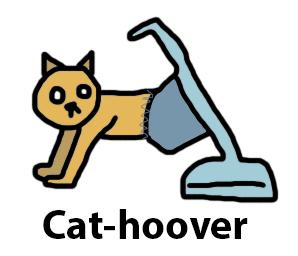 Cat+Hoover