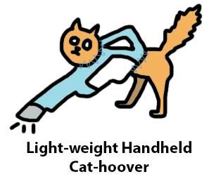 cathoover3
